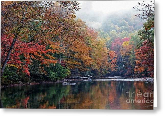 Fall Colors Digital Art Greeting Cards - Monongahela National Forest Greeting Card by Thomas R Fletcher