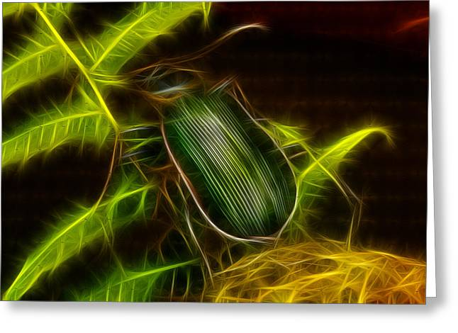 Bug Eyed Monster Greeting Cards - Monster Carabid Beetle Greeting Card by Douglas Barnett