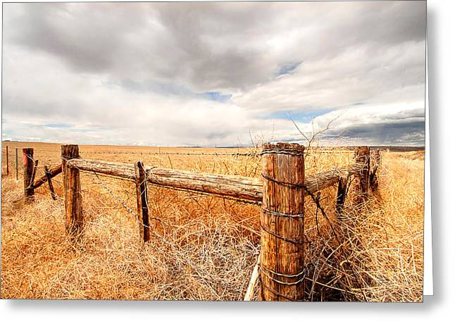 The Western Hotel Greeting Cards - Montana Fencepost Greeting Card by Wendy Thompson