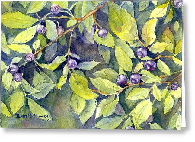 Huckleberry Paintings Greeting Cards - Montana Huckleberries Greeting Card by Terry Moss