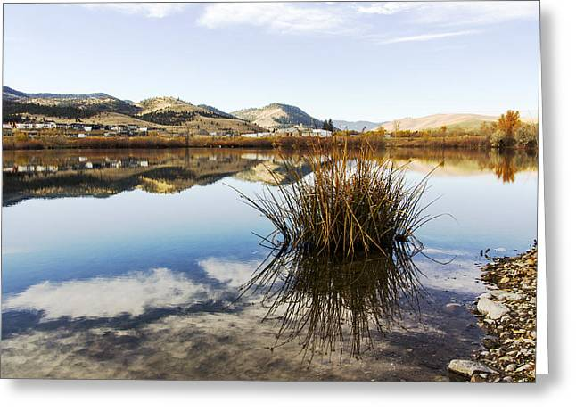 Montana Reflections Greeting Card by Dana Moyer