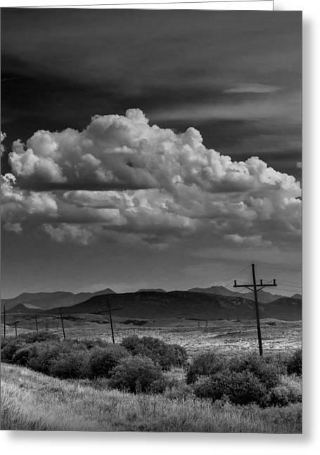 Montana Landscape Art Greeting Cards - Montana Roadside in Black and White Greeting Card by Randall Nyhof