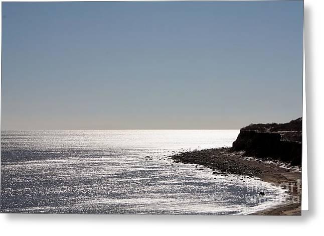 Montauk Beach And Bluff Greeting Card by John Telfer