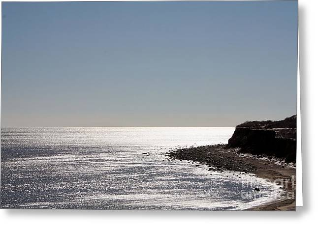 On The Beach Greeting Cards - Montauk Beach and Bluff Greeting Card by John Telfer
