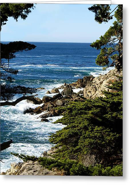 Barbara Snyder Greeting Cards - Monterey 17 Mile Drive Greeting Card by Barbara Snyder