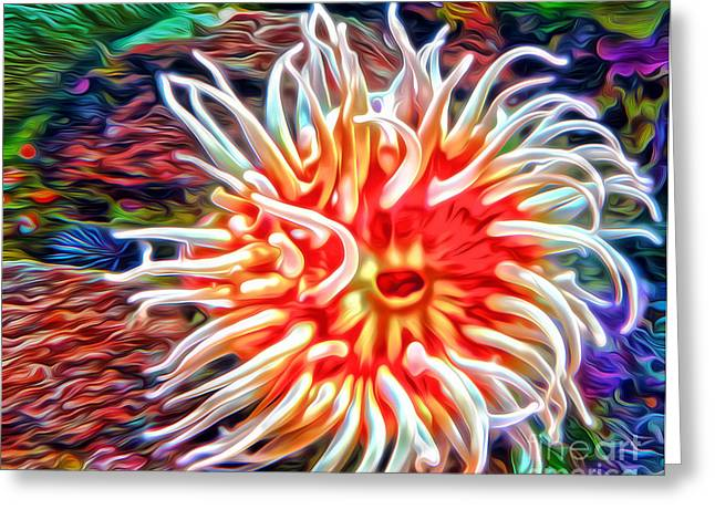 Gregory Dyer Greeting Cards - Monterey Bay Aquarium - Anemone Greeting Card by Gregory Dyer