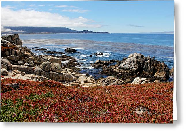 California Ocean Photography Greeting Cards - Monterey Greeting Card by Judy Vincent
