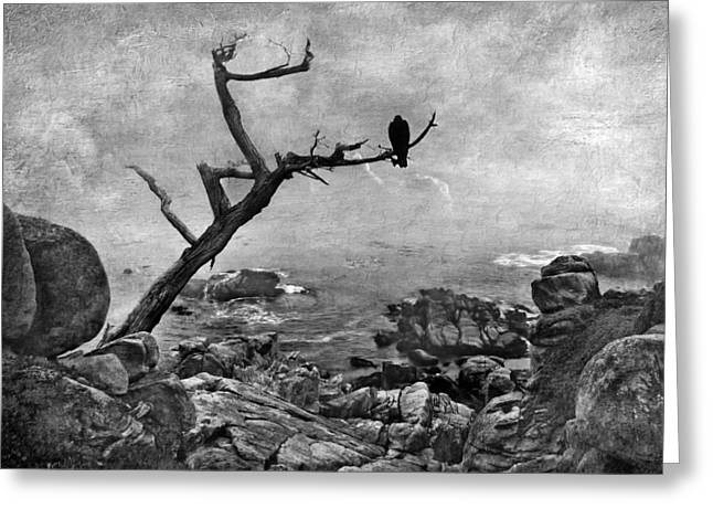 Monterey Mist - Black And White Seascape Greeting Card by Nikolyn McDonald