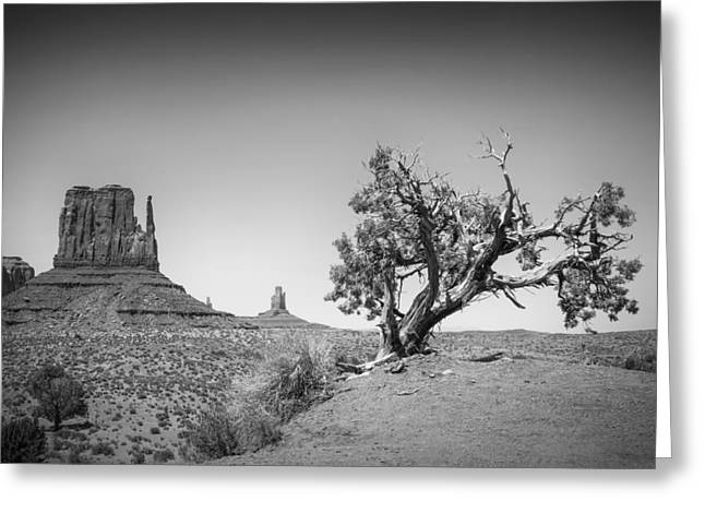 White Mittens Greeting Cards - Monument Valley West Mitten Butte bw Greeting Card by Melanie Viola