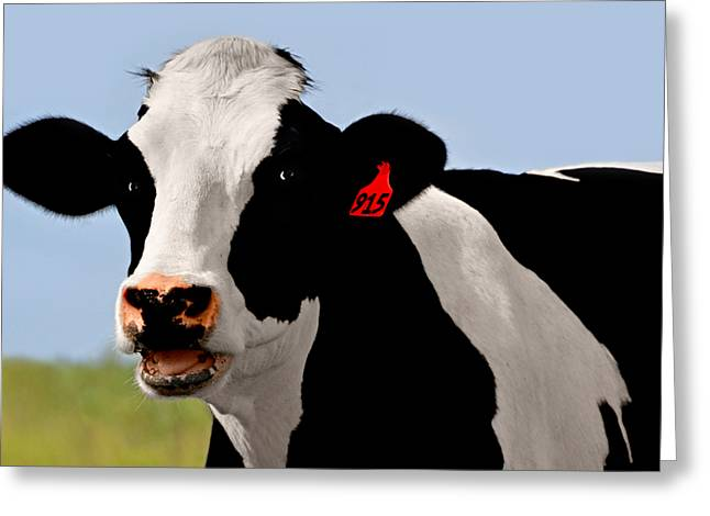 Got Milk Greeting Cards - Moo Cow Greeting Card by Steven  Michael