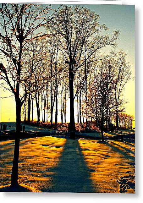 Paisaje Greeting Cards - Mood Lighting Greeting Card by Frozen in Time Fine Art Photography