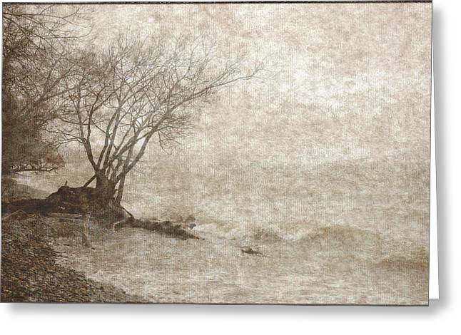 Gnarly Greeting Cards - Moody Antique Sepia Shoreline Landscape Greeting Card by Jocelyn Ball