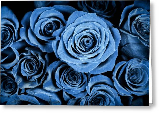 Interior Still Life Greeting Cards - Moody Blue Rose Bouquet Greeting Card by Adam Romanowicz