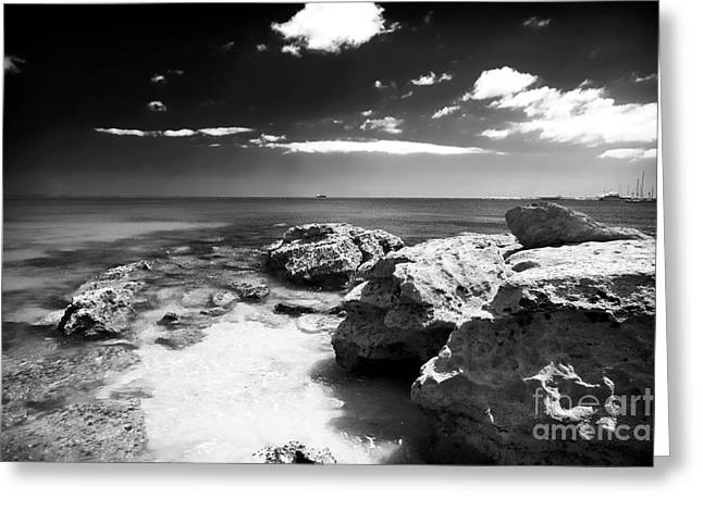Moody Posters Greeting Cards - Moody in Cascais Greeting Card by John Rizzuto