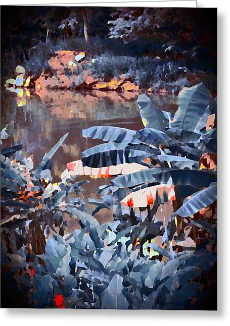 Tropical Rainforests Mixed Media Greeting Cards - Moody River Greeting Card by David Hill