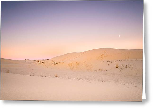 Dunes Greeting Cards - Moon and Sand Dune in Twilight Greeting Card by Ellie Teramoto
