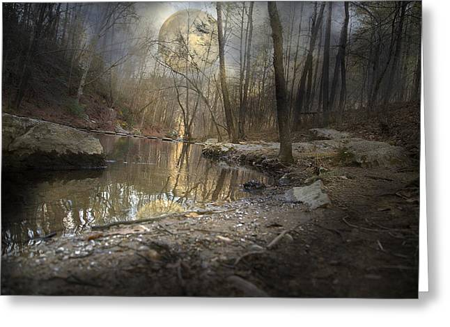 Trees Reflecting In Creek Greeting Cards - Moon Camp Greeting Card by Betsy A  Cutler