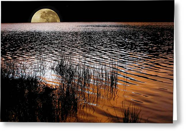 Ripples Of Black And White Greeting Cards - Moon catching a glimpse of Sunset Greeting Card by Kaye Menner