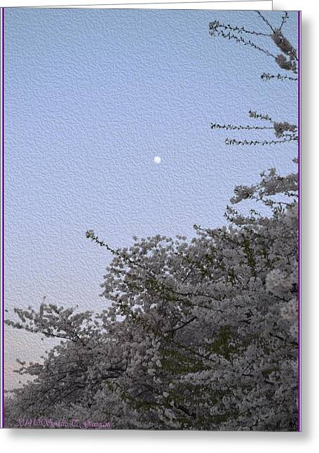 Limited Vision Greeting Cards - Moon in Cherry blossom Greeting Card by Sonali Gangane