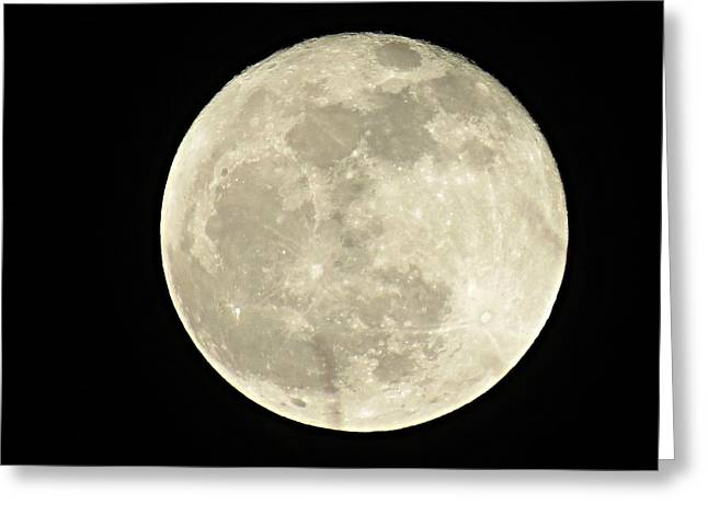 Man In The Moon Greeting Cards - Moon Greeting Card by Meredith Plazek