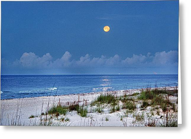 Crimson Tide Greeting Cards - Moon Over Beach Greeting Card by Michael Thomas