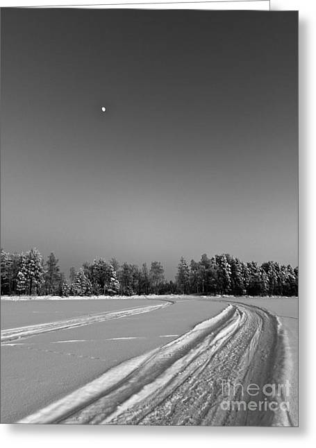 Snowy Night Night Greeting Cards - Moon Over Ice Road Greeting Card by Ismo Raisanen