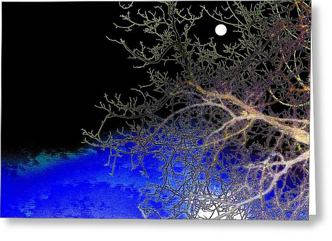 Intrigue Greeting Cards - Moon Over Sapphire Pond Greeting Card by Will Borden