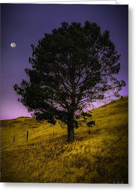Concord Greeting Cards - Moon Set Greeting Card by PhotoWorks By Don Hoekwater