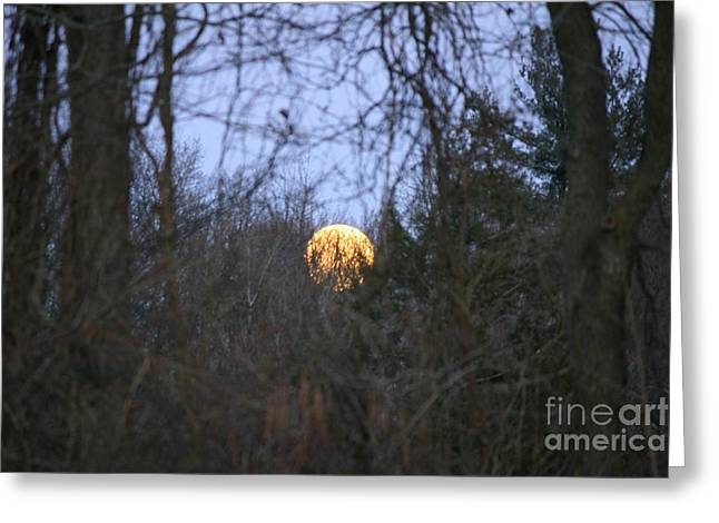 Neal Eslinger Greeting Cards - Moon Shadow Greeting Card by Neal  Eslinger