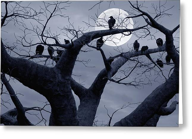 Frightful Greeting Cards - Moon Whisperer II Greeting Card by Edwin Verin