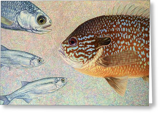 Aquatic Paintings Greeting Cards - Mooneyes Sunfish Greeting Card by James W Johnson