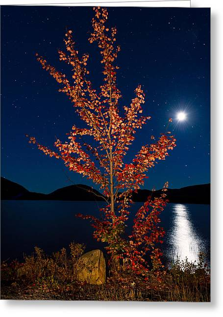 Moonglow Greeting Cards - Moonglow on Eagle Lake Greeting Card by Michael Blanchette