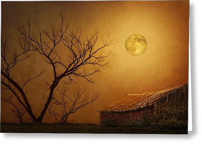 Barn Digital Greeting Cards - Moonglow over Polenz Ranch Greeting Card by Nikolyn McDonald