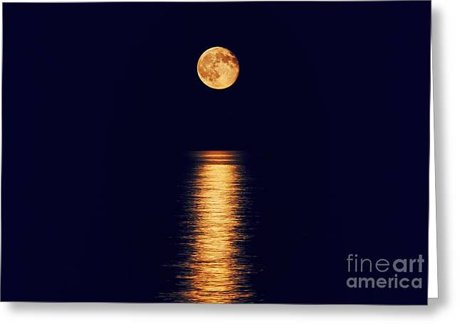 Super Moon Greeting Cards - Moonlight Greeting Card by Charline Xia
