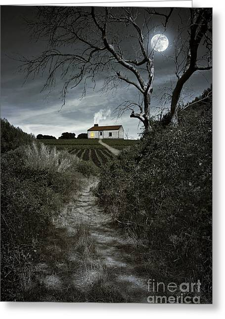 Moonlight Scene Greeting Cards - Moonlight Farm Greeting Card by Carlos Caetano