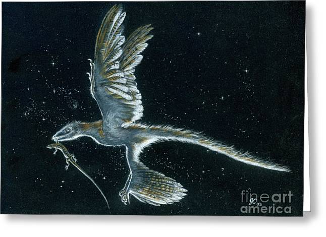 Dinosaurs Greeting Cards - Moonlight hunt - Microraptor Greeting Card by Julius Csotonyi