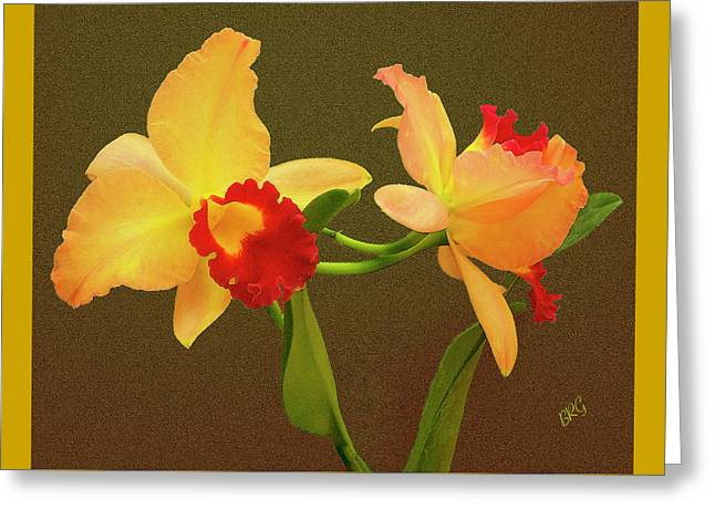 Golden Pink Orchid Greeting Cards - Moonlight Lady Orchid Greeting Card by Ben and Raisa Gertsberg