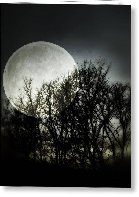 Universe Modern Art Greeting Cards - Moonlight Greeting Card by Marianna Mills