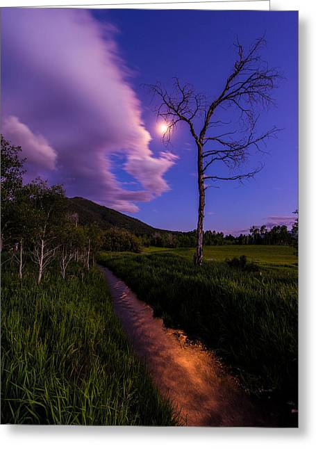 Mountain Valley Greeting Cards - Moonlight Meadow Greeting Card by Chad Dutson