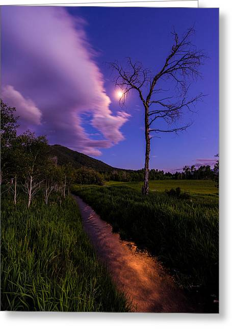 Summer Season Landscapes Greeting Cards - Moonlight Meadow Greeting Card by Chad Dutson