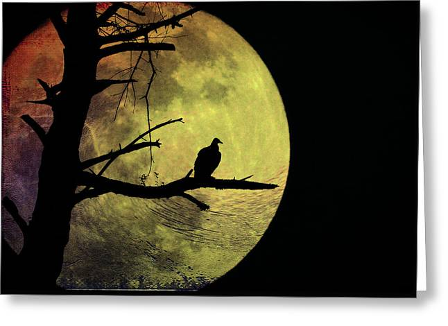 Moonlight Mile Greeting Card by Bill Cannon