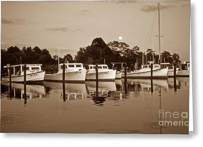 Scenic Byways Greeting Cards - Moonlight Greeting Card by Skip Willits