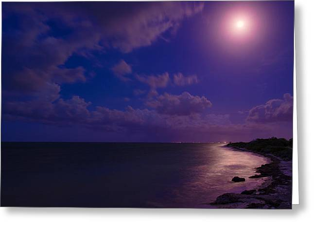 Ocean Shore Greeting Cards - Moonlight Sonata Greeting Card by Chad Dutson