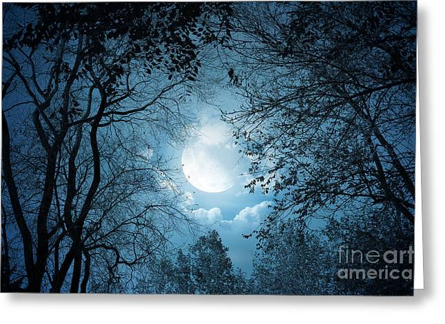 Lavender Pyrography Greeting Cards - Moonlight with Forest Greeting Card by Boon Mee