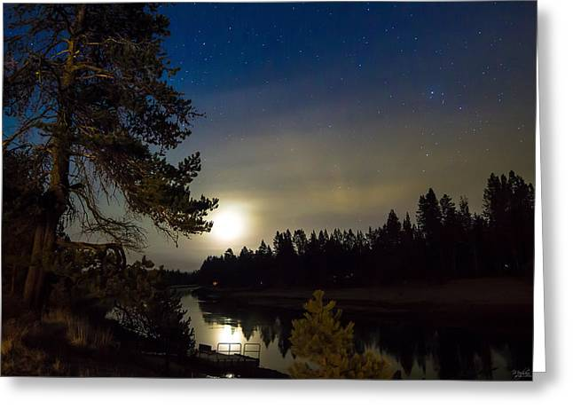 Pacificnorthwest Greeting Cards - Moonlit Dance  Greeting Card by Meghann Davis
