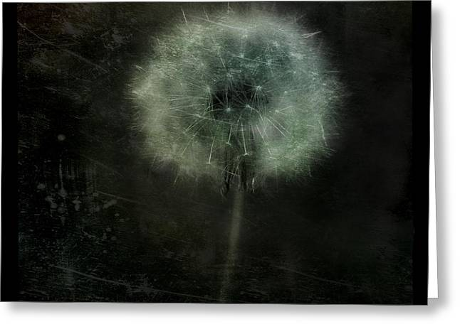Moonlit Dandelion Greeting Card by Gothicolors Donna