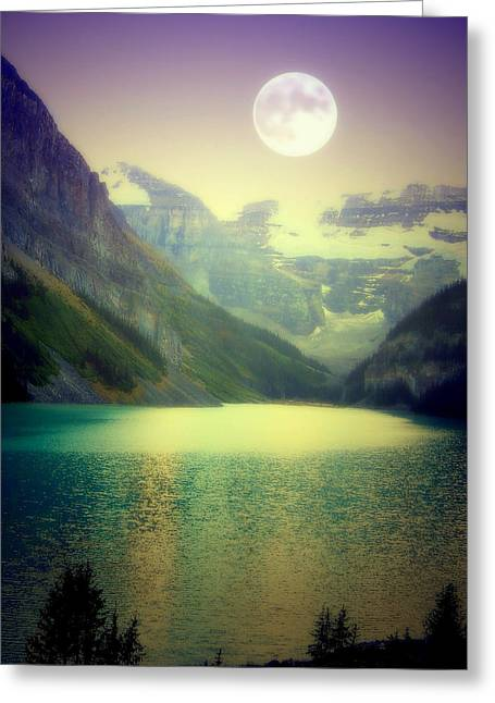 Reflection Harvest Greeting Cards - Moonlit Encounter Greeting Card by Karen Wiles