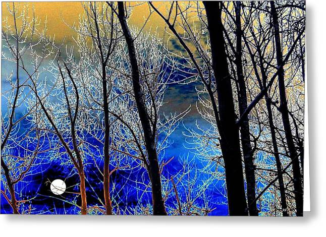 Wintry Digital Art Greeting Cards - Moonlit Frosty Limbs Greeting Card by Will Borden