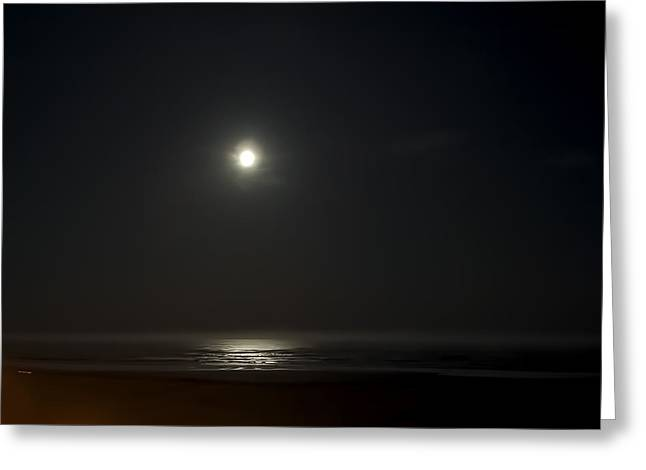 Sea Birds Greeting Cards - MOONLIT NIGHT OVER PACIFIC OCEAN on SEASIDE OREGON COAST Greeting Card by Daniel Hagerman