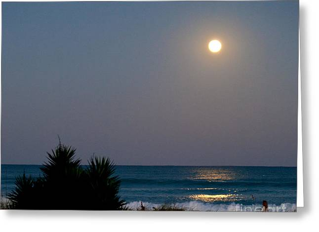 Sea Moon Full Moon Greeting Cards - Moonlit Stroll Greeting Card by Michelle Wiarda